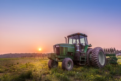 Green tractor in field (photo)